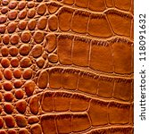 The texture of crocodile skin - stock photo