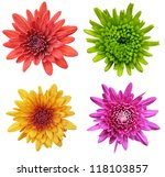 colorful collage of flowers | Shutterstock . vector #118103857