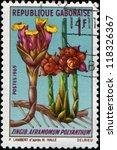 Small photo of GABON - CIRCA 1969: A stamp printed in Gabon shows Aframomum Polyanthum, circa 1969