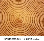 Wood Texture Of Cutted Tree...
