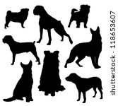 Stock vector vector silhouettes of dogs of different breeds isolated on a white background dog 118653607
