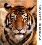 Portrait Painting Of Tiger Fac...
