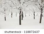 winter trees on snow white... | Shutterstock . vector #118872637