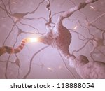 Inside the brain. Concept of neurons and nervous system. - stock photo