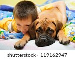 Stock photo little puppy bullmastiff played with boy in the house 119162947