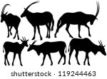 Antelopes  Scimitar Oryx And...
