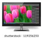 widescreen tft lcd monitor with ... | Shutterstock . vector #119256253