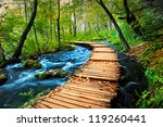Deep forest stream. Crystal clear water. Plitvice lakes, Croatia - stock photo