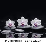 Three White Orchid With Stones...