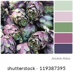 Artichoke background colour palette with complimentary swatches. - stock photo