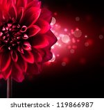 Dahlia Autumn Flower Design.re...