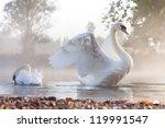 Mute Swan  Cygnus Olor ...