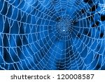 Cobweb With Dew Drops On A Blu...