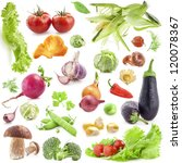 collection of vegetables... | Shutterstock . vector #120078367