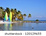Smathers Beach On The Atlantic Ocean in Key West, Florida, With Palm Trees, Catamaran Sailboats And A Pelican - stock photo