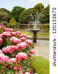 Stock photo fountain in rose garden 120153673