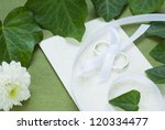 rings and other wedding... | Shutterstock . vector #120334477