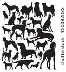 Stock vector hunting dogs silhouette 120382033