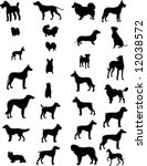 dogs silhouettes 3 | Shutterstock .eps vector #12038572