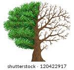 realistic illustration of tree. ... | Shutterstock . vector #120422917