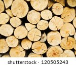 Wood Stump Background