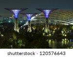 Singapore   Nov 01   A Night...