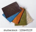 Color samples of different crocodile leather - stock photo