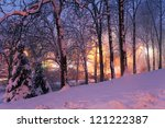 snow on winter trees and city lights in haze - stock photo