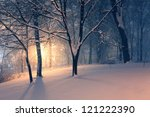 winter evening park and light in haze behind the trees - stock photo