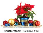 beautiful poinsettia with... | Shutterstock . vector #121861543