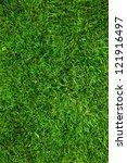 Green Grass Background  Natura...