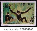 vietnam   circa 1981  a stamp... | Shutterstock . vector #122038963
