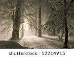 Snowy Landscape With Lantern I...