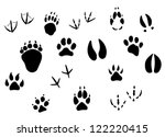 Animal footprints and tracks isolated on white for wildlife concept design. Jpeg version also available in gallery - stock vector