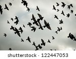Silhouettes Of Flying Pigeons...