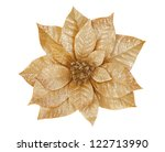 Gold Poinsettia isolated on white - stock photo