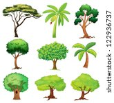 Illustration Of Various Trees...