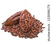 cocoa beans  into cocoa fruit... | Shutterstock . vector #123008173