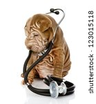 sharpei puppy dog with a stethoscope on his neck. isolated on white background - stock photo