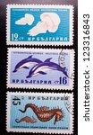 bulgaria   circa 1961  a stamp... | Shutterstock . vector #123316843
