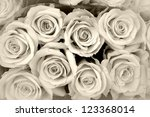 roses pattern - stock photo
