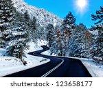 Road Firs Sun Snow Xmas