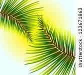 palm leaves against the sunlight | Shutterstock .eps vector #123671863