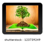 Tree on  open book with grass on wooden planks in black tablet like Ipade . Concept of growth of knowledge when you read books - stock photo