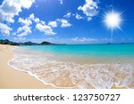 beautiful caribbean island beach | Shutterstock . vector #123750727