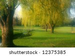 willow trees by the river in... | Shutterstock . vector #12375385