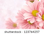 Stock photo pink flowers background 123764257