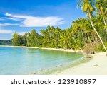 palm panorama coconut coast | Shutterstock . vector #123910897