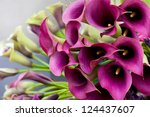 Beautiful Bouquet Of Calla...