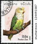 Small photo of LAOS - CIRCA 1997: A stamp printed in Laos shows Agapornis cana, circa 1997